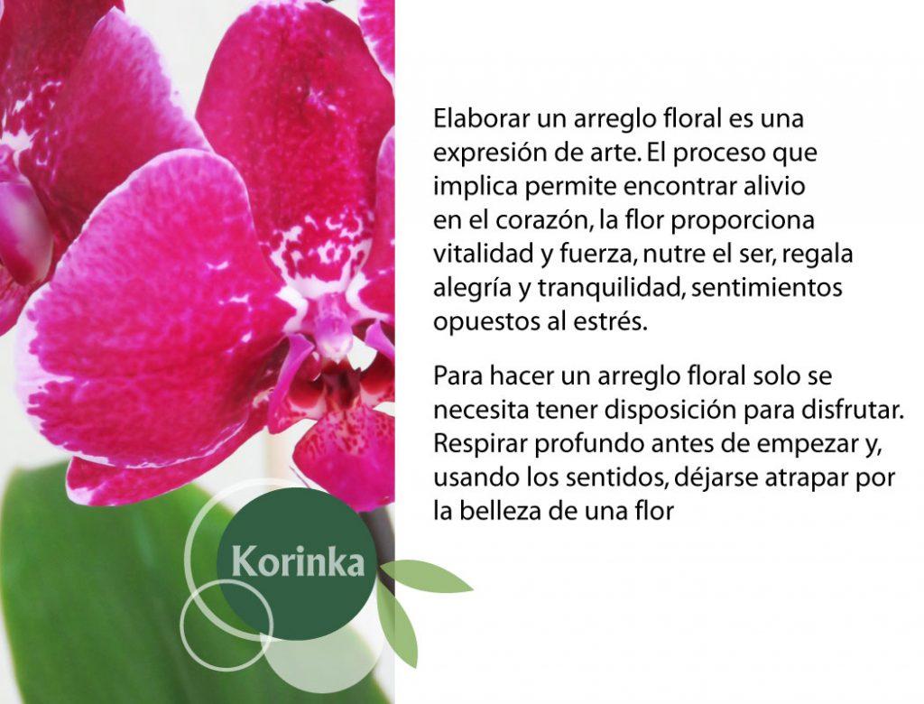 korinka222