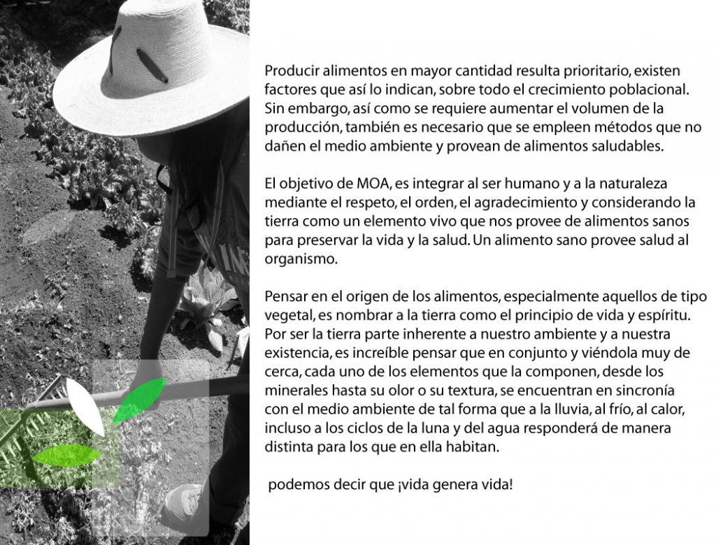 aliemntacionagricultura